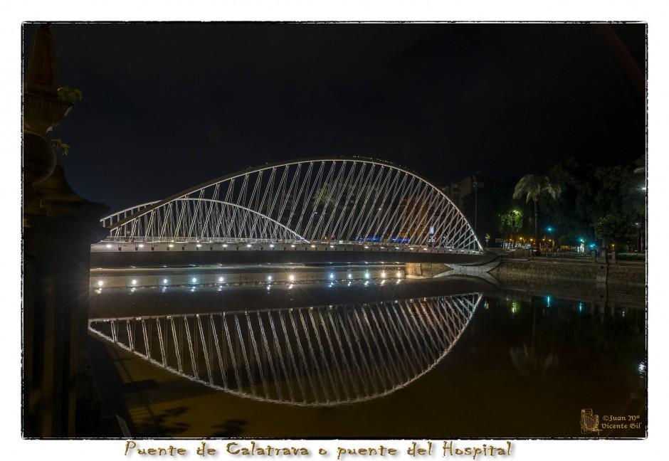 El puente de Calatrava o puente del hospital
